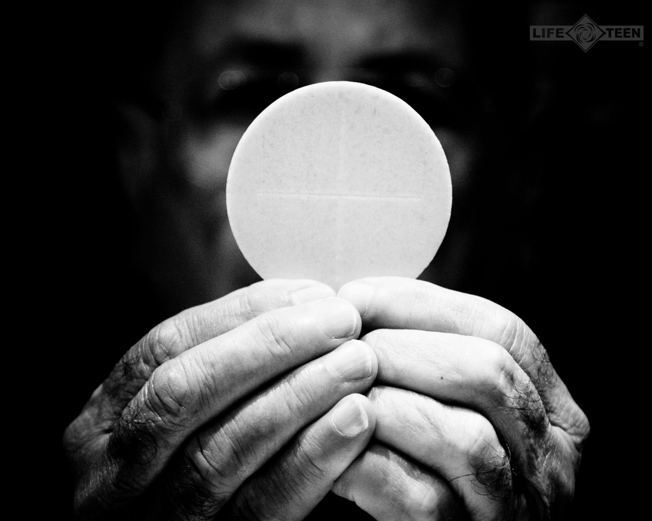 Catholic Men's Daily Devotional and Bible Study – 20th Week